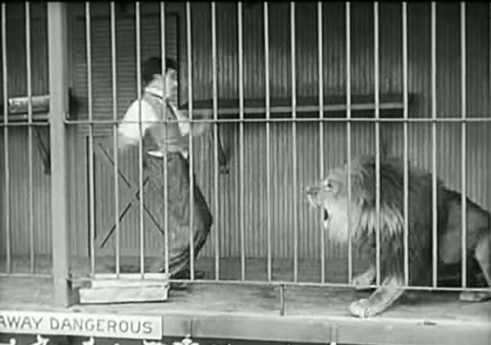Lou Costello goes lion hunting in Africa - From the old Abbott & Costello radio show - what *did* happen when Lou Costello went lion hunting in Africa?