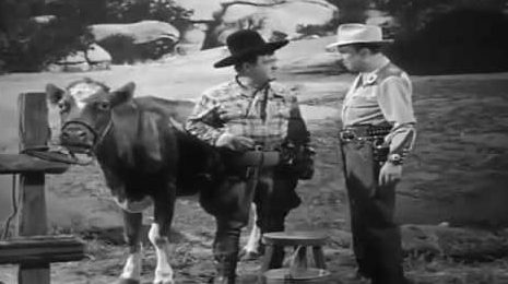 Milk a cow - Lou Costello and Bud Abbott